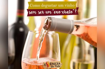 """Como Degustar Um Vinho, Sem Ser Um """"Eno-Chato"""""""