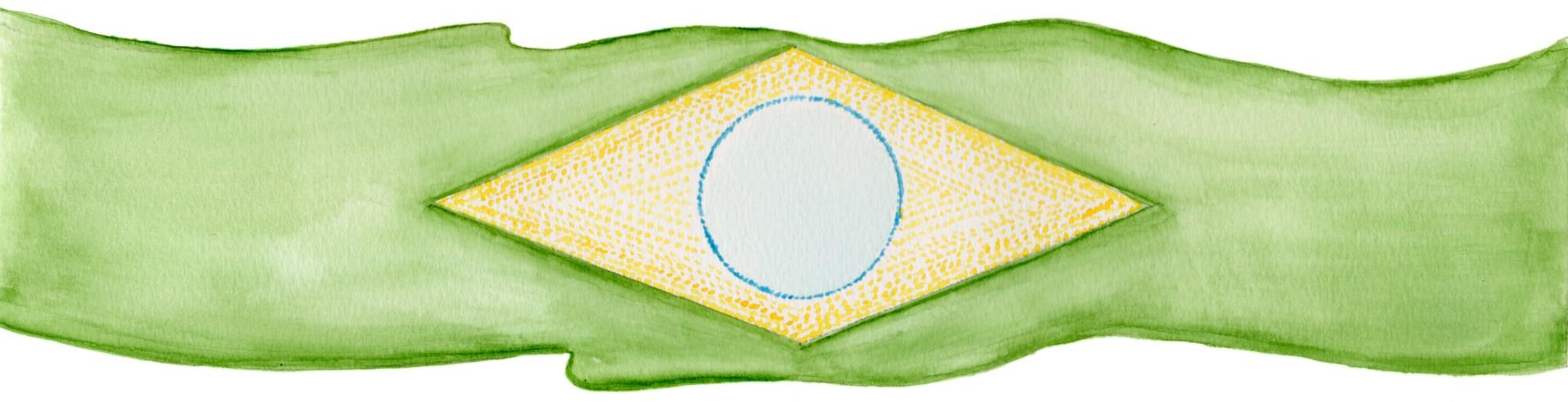 Bandeira do Brasil Cibele Leonetti